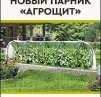 Декоративные цветущие кустарники для дачи