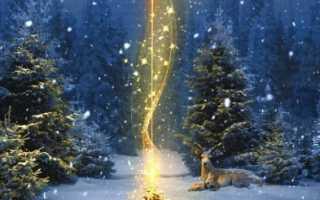 Супер эффективные рождественские заговоры