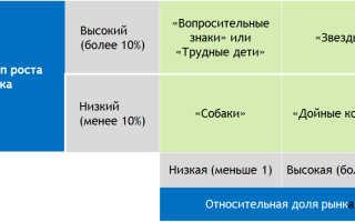 Выводы по матрице бкг на примере