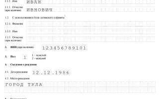 Пример заполнение формы Р21001