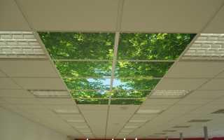 Подвесной потолок армстронг как собрать
